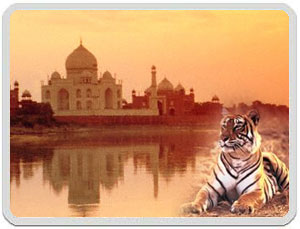 Tours to Taj Mahal, Agra and Wildlife Tours